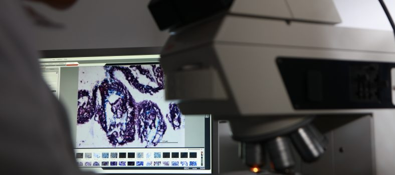 Featured image Tissue Based Diagnostic & Research Services